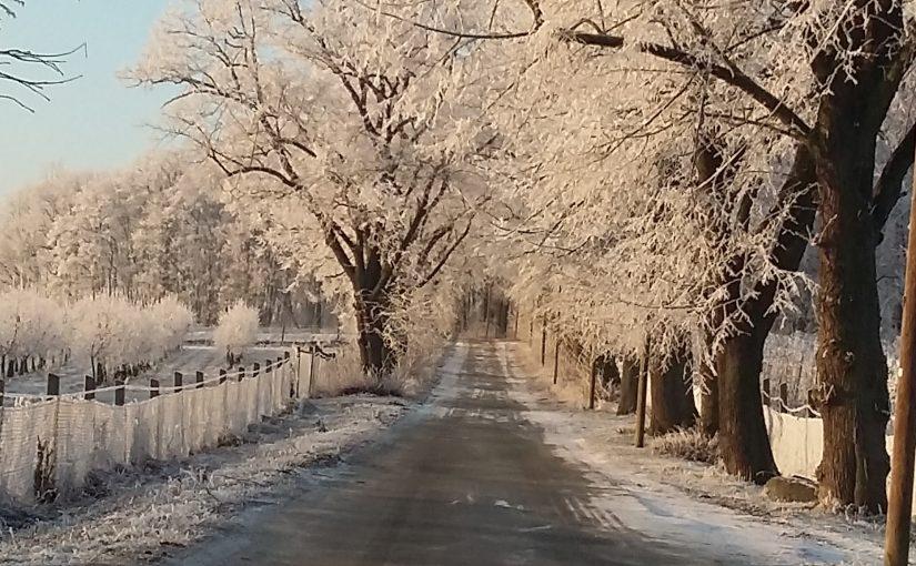KENKOKAN – Zum Winterausklang